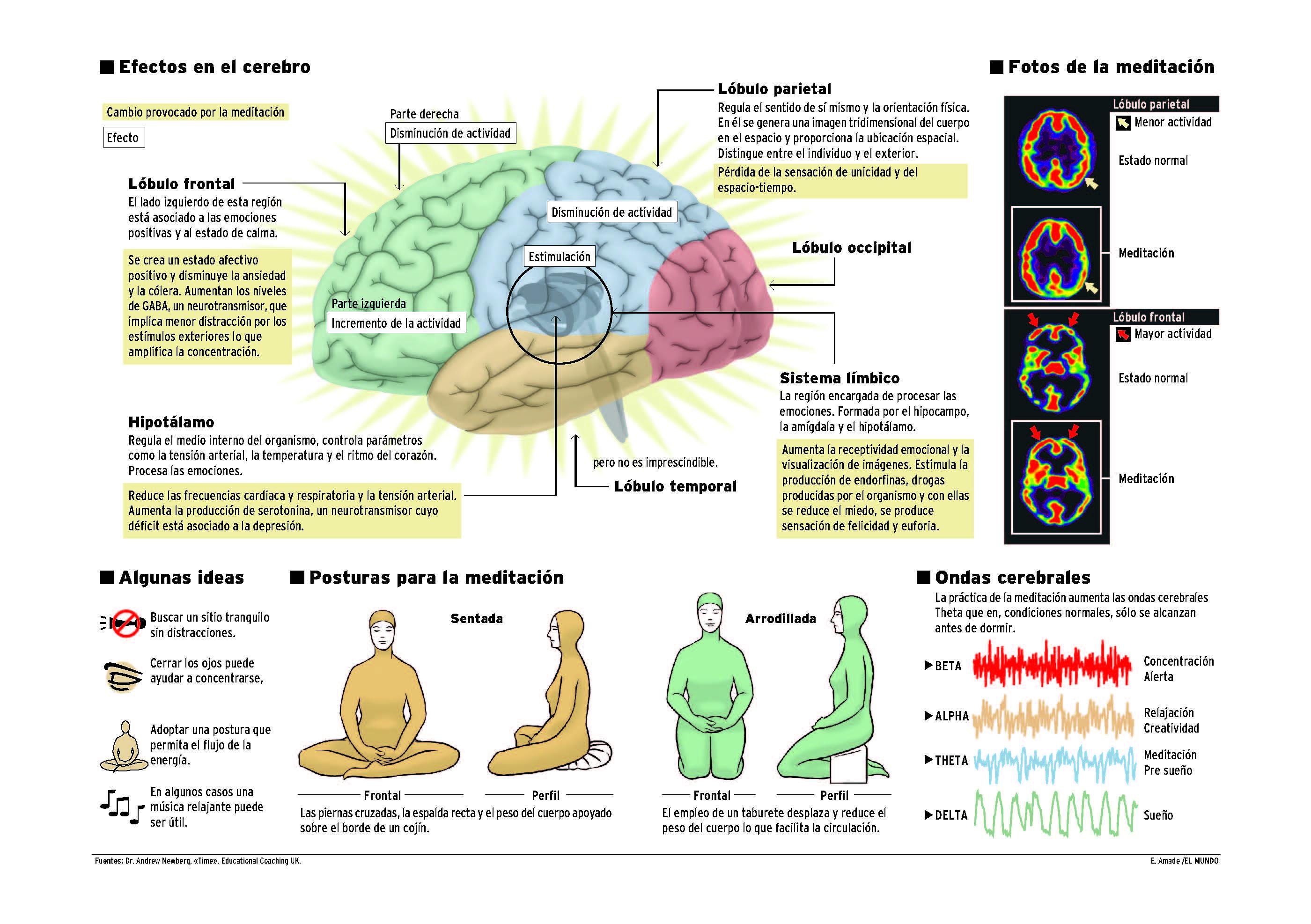 Meditación y sus efectos en el cerebro