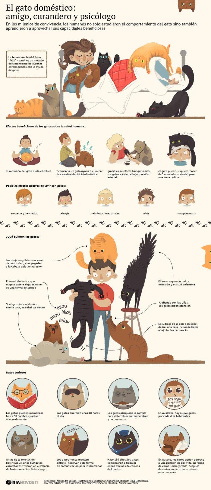 Tu gato: amigo, curandero y psicólogo
