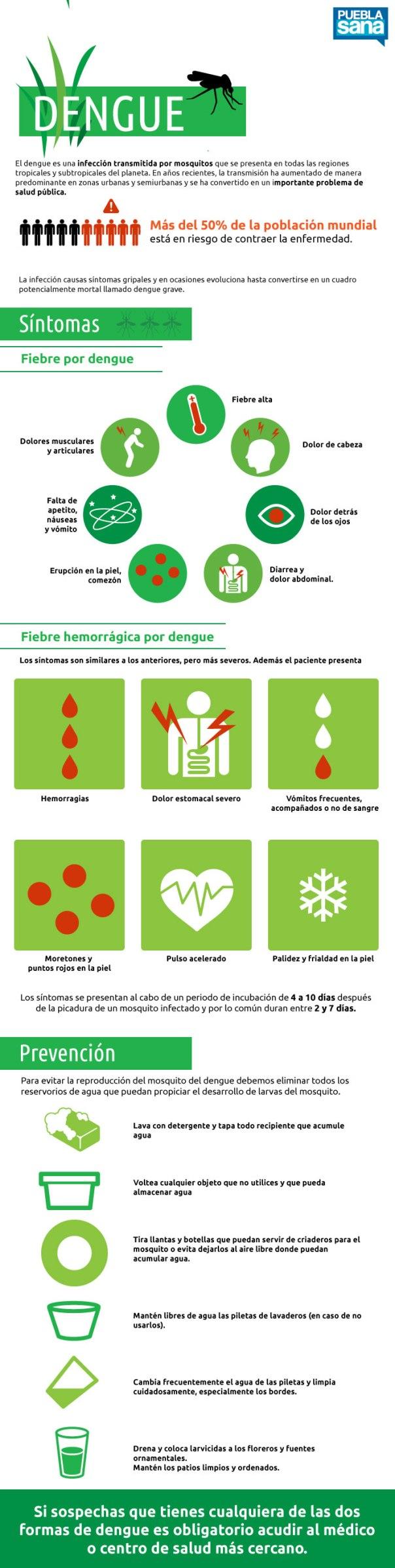 Qué es el Dengue