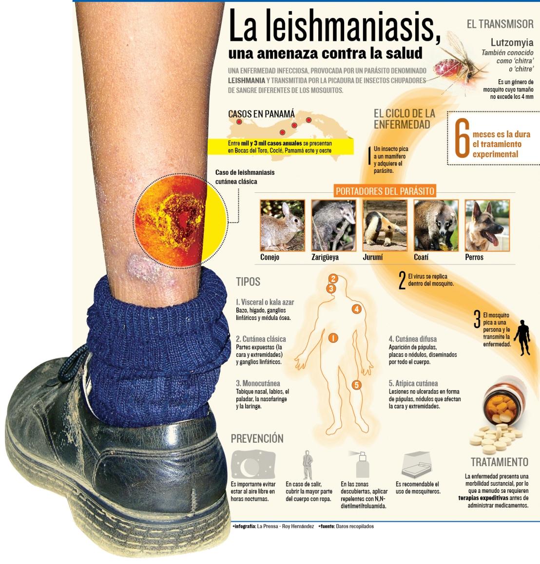 Qué es la Leishmaniasis