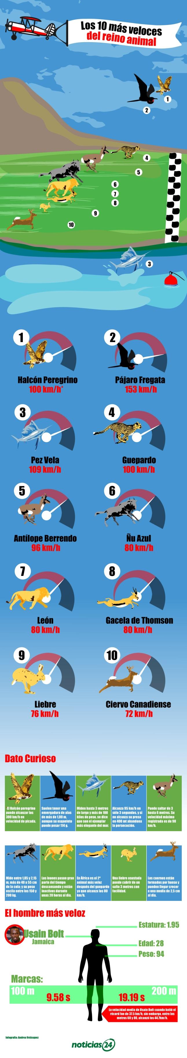 10 especies más rápidas del Reino Animal