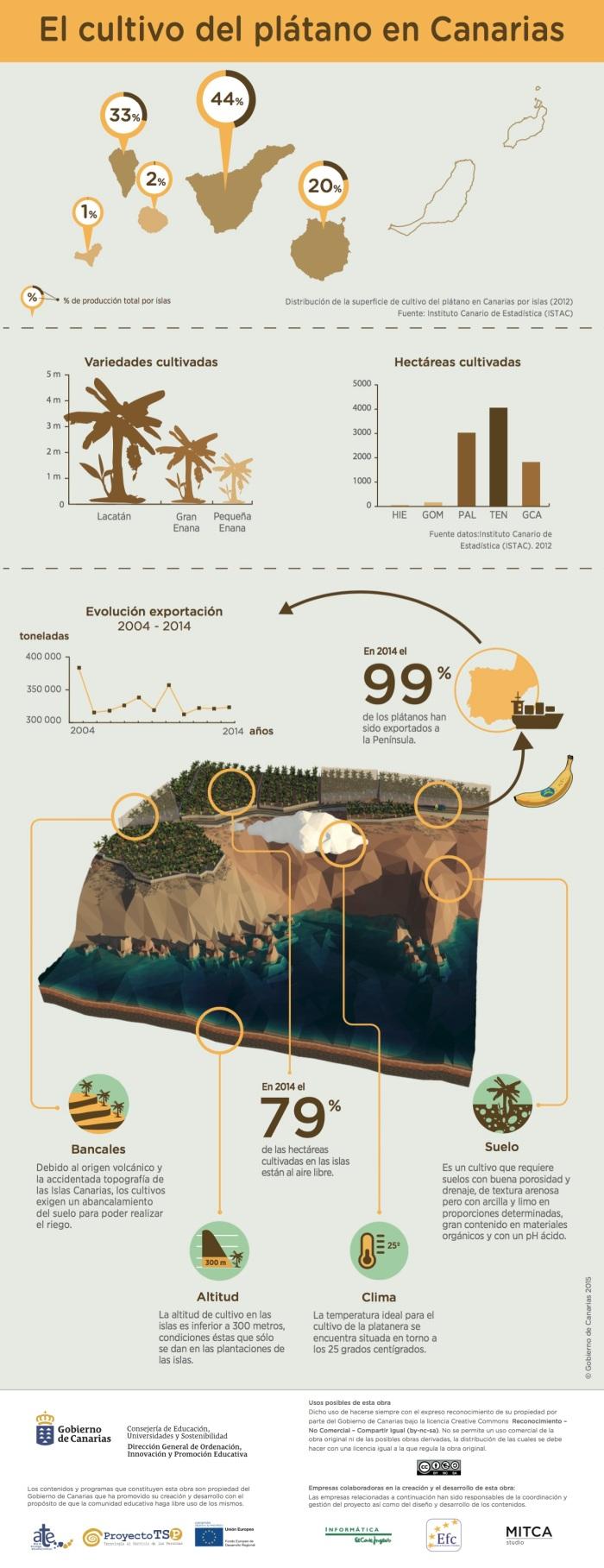El cultivo del Plátano en Canarias