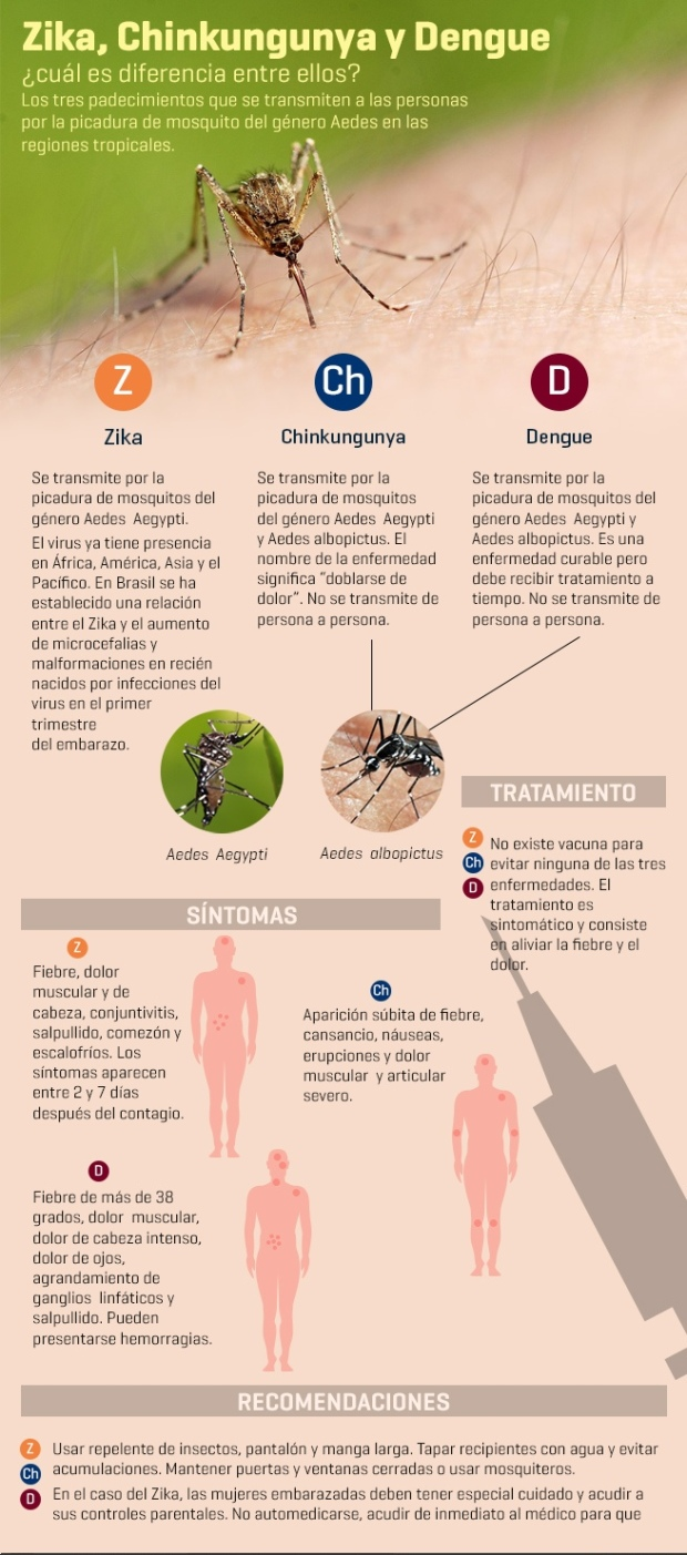 Zika vs. Chinkungunya vs. Dengue