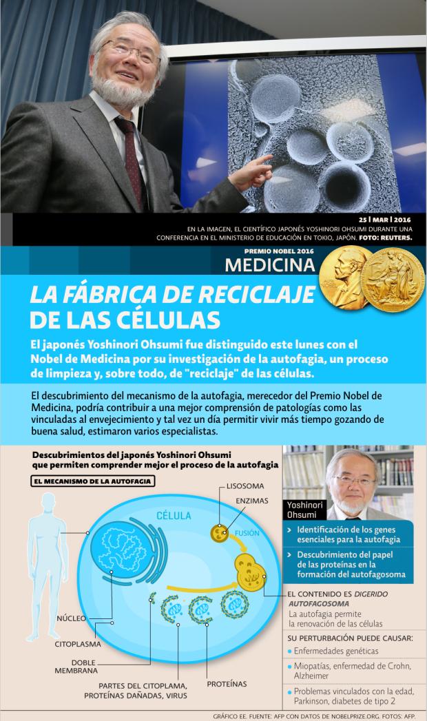Premio Nobel medicina 2016